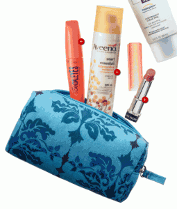 target summer beauty bag