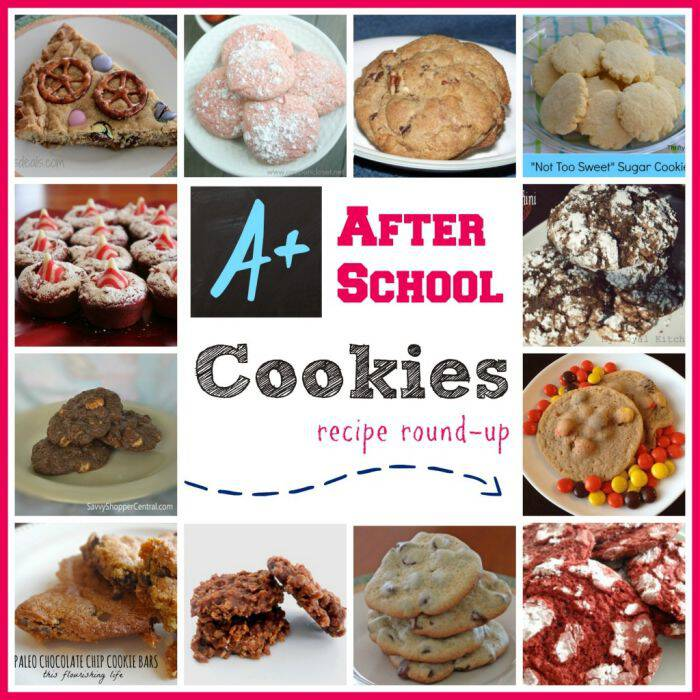 After-School-Cookies-Recipes-1024x1024