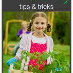 55 of the Best Gardening Tips and Tricks