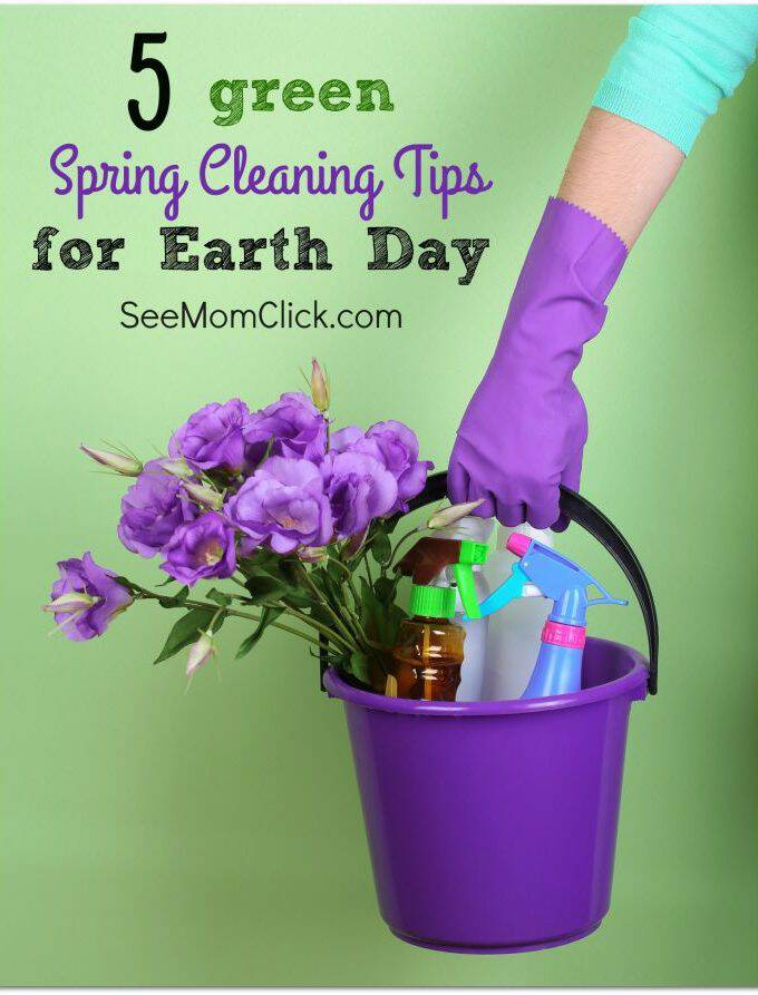 Earth Day is coming & if you're like me you're also in the midst of a major spring cleaning purge. Here are 5 green spring cleaning to help you save!
