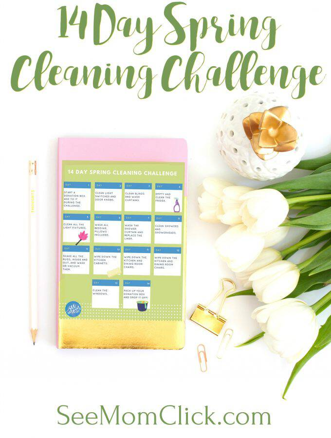 14 Day Spring Cleaning Challenge