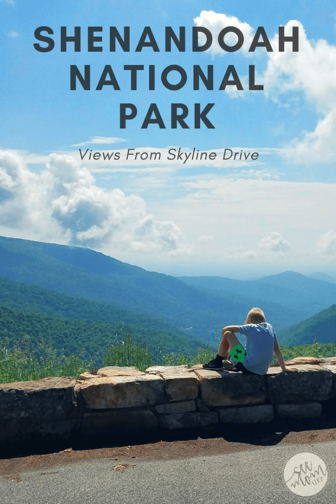 A must-do in the Shenandoah Valley, Virginia, is to take a ride on Skyline Drive through Shenandoah National Park. The scenery is stunning, and home to wildlife galore. Here our some of our favorite captures.